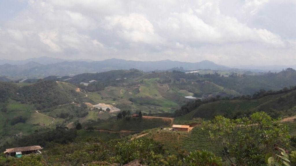 Conmoción en Medellín por homicidio de dos hermanos silleteros